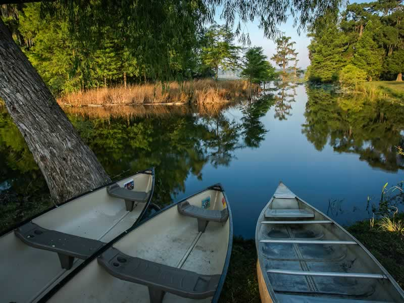 Boats in a tranquil Louisiana Cypress swamp