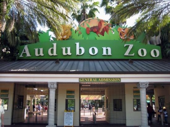 The Audubon Zoo in New Orleans
