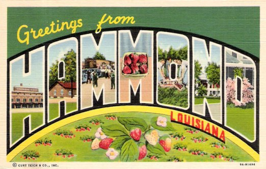 Hammond and Ponchatoula Louisiana travel information tourism – Tourist Attractions Map In Louisiana