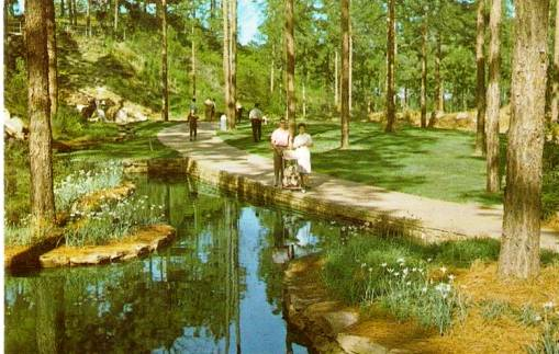 Vintage scene at Hodges Gardens in Louisiana