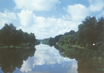 Bayou Teche photo in Louisiana's Acadiana region